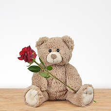 Teddy 35 cm with red rose