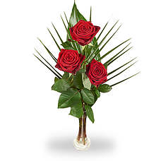 Rode rozen met vaas