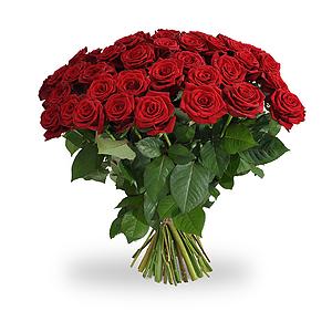10 of meer lange rode rozen