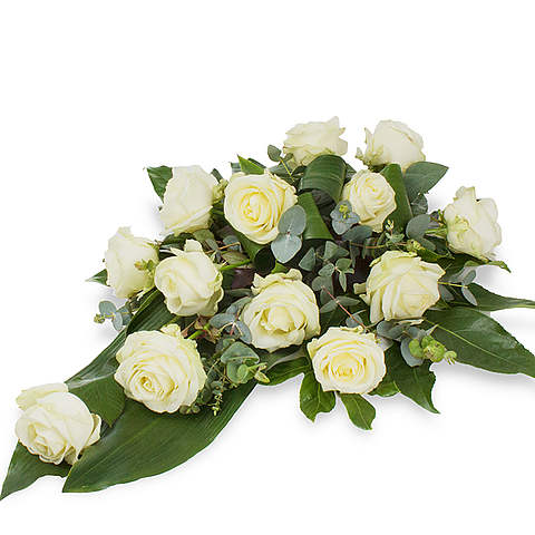 White Rose XL