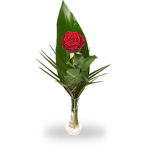 Red Roses With Vase Order And Deliver Topbloemennl