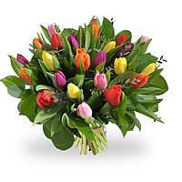 Boeket Gemengde tulpen