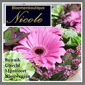 Logo Bloemenboutique Nicole