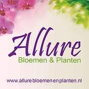 Logo Allure Bloemen & Planten Breda