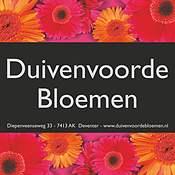Logo Duivenvoorde Bloemen
