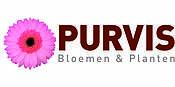 Logo Purvis Bloemen&planten
