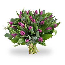 Boeket paarse tulpen