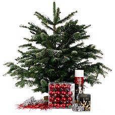 Nordmann mini kerstboom Rood