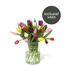 Gemengde tulpen incl. vaas