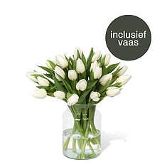 Witte tulpen incl. vaas