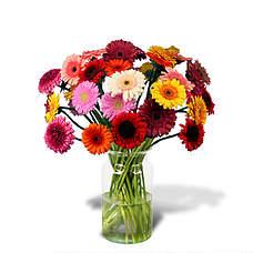 Bouquet Zoë with vase