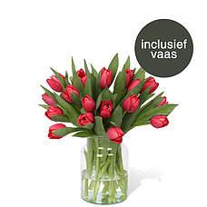 Rode tulpen incl. vaas