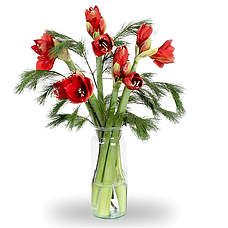 Bouquet Alexa Red with vase