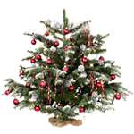 Kerstplant / kerstboom