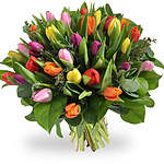 Spring bouquets and tulips