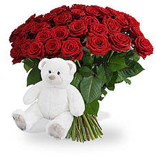 40 Long stem red roses + white teddy 45cm