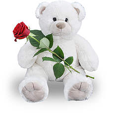 Big teddy 45 cm! + red rose