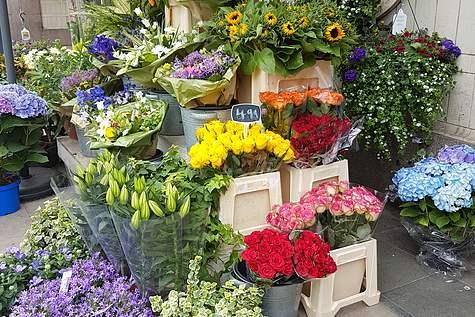 Winkelpand Amstel Flowers