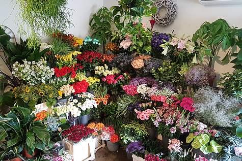Detailfoto 2 Amstel Flowers