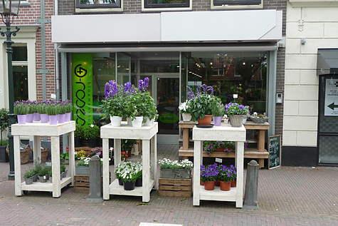 Winkelpand Bloemenshop 4 Roses