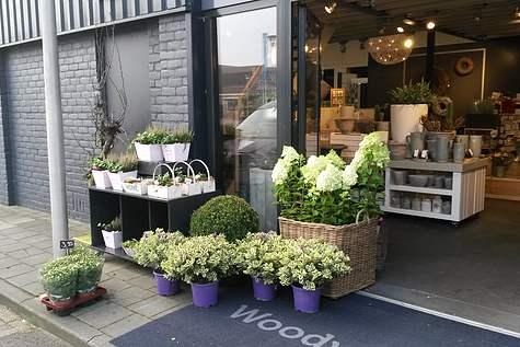 Winkelpand Bosch Bloemen en Wonen