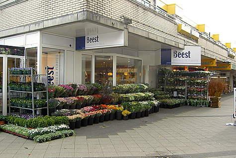 Winkelpand Van Beest Bloemen en Planten Eemnes