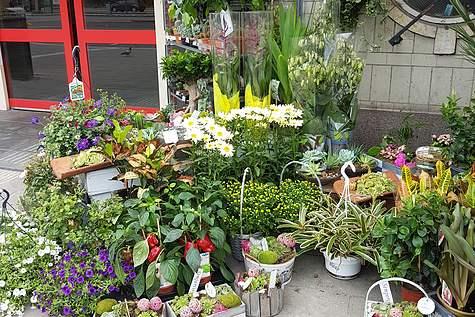 Detailfoto 4 Amstel Flowers