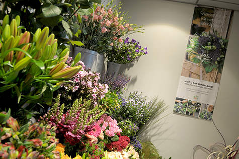 Detailfoto 4 Duivenvoorde Bloemen