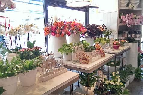 Winkelpand Flowers@home