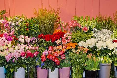 Detailfoto 5 Bon Bon Fleur