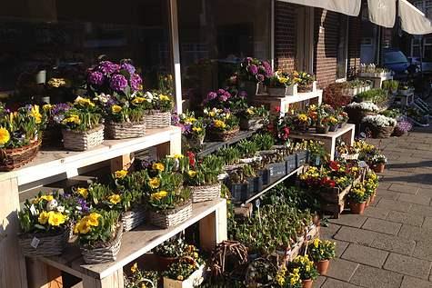 Winkelpand Bloemenhuis de Narcis