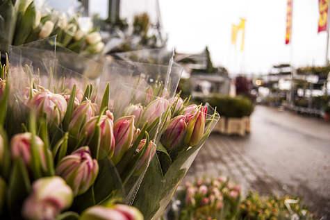 Detailfoto 2 Flowershop Oudeman
