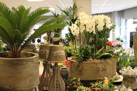 Winkelpand Fleurcentrum Blok