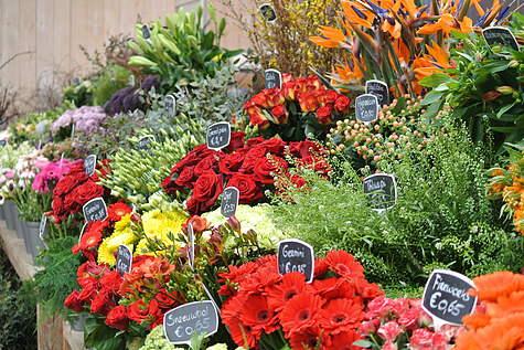 Detailfoto 4 Poppelaars Tuincentrum B.V.