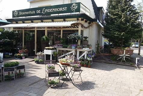 Detailfoto 5 Bloemenhuis De Lindenhorst