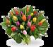 Boeket gemengde kleuren tulpen groot