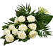 White Rose groot