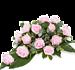 Pink Rose XL