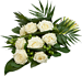 White Rose standaard