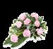 Pink Rose standaard