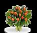 Boeket oranje tulpen standaard